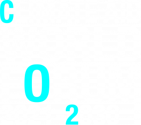 CAWF-logo-2021_white